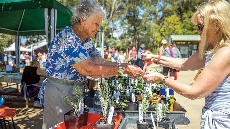 Redcliffe Garden &  Lifestyle Expo