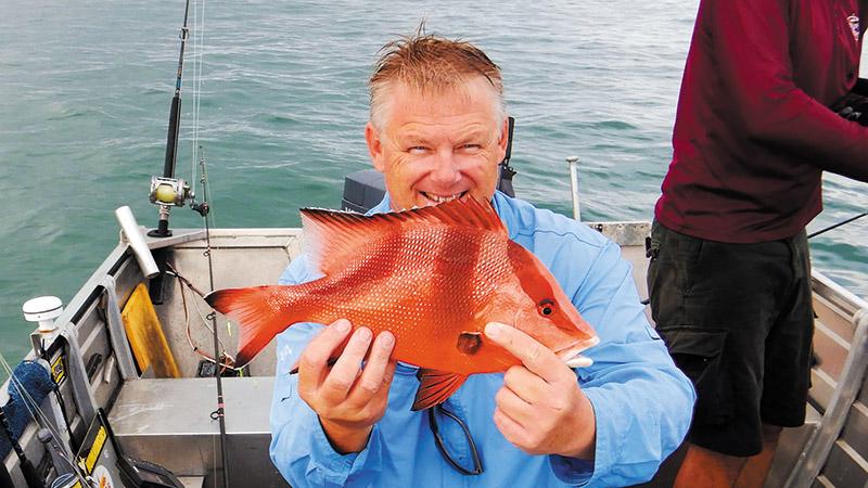 Fish of the Month: Red Emperor (Lutjanus sebae)