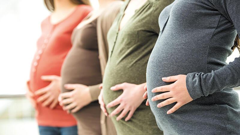 Birthing Revolution