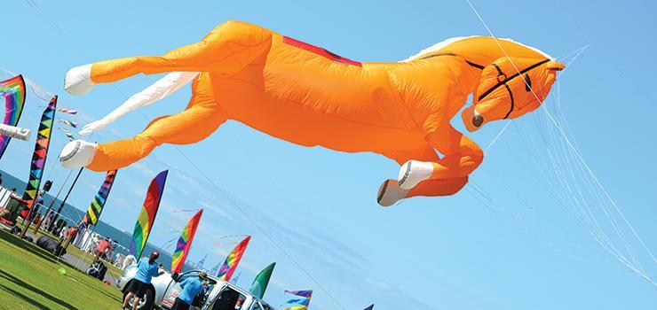 KiteFest 2016